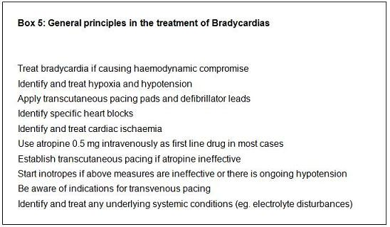 Brachycardia box5_0