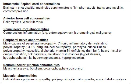 GBS_differential_diagnosis