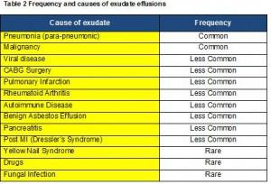 Pleural E CEM - 2