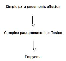 Pleural E CEM - 3