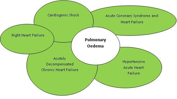 Pulmonary Oedema3