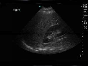 Ultrasound_Booklet06