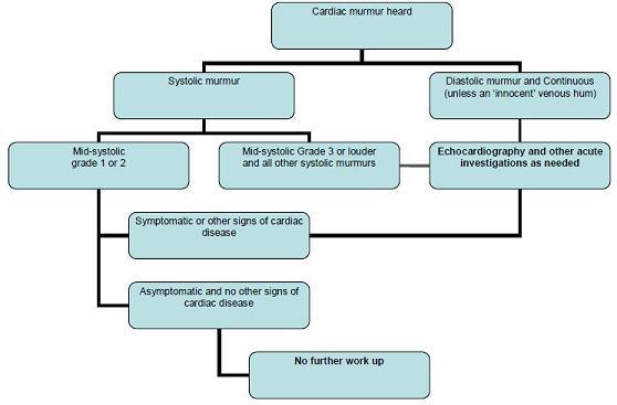 Valvular Heart Disease - Image 2