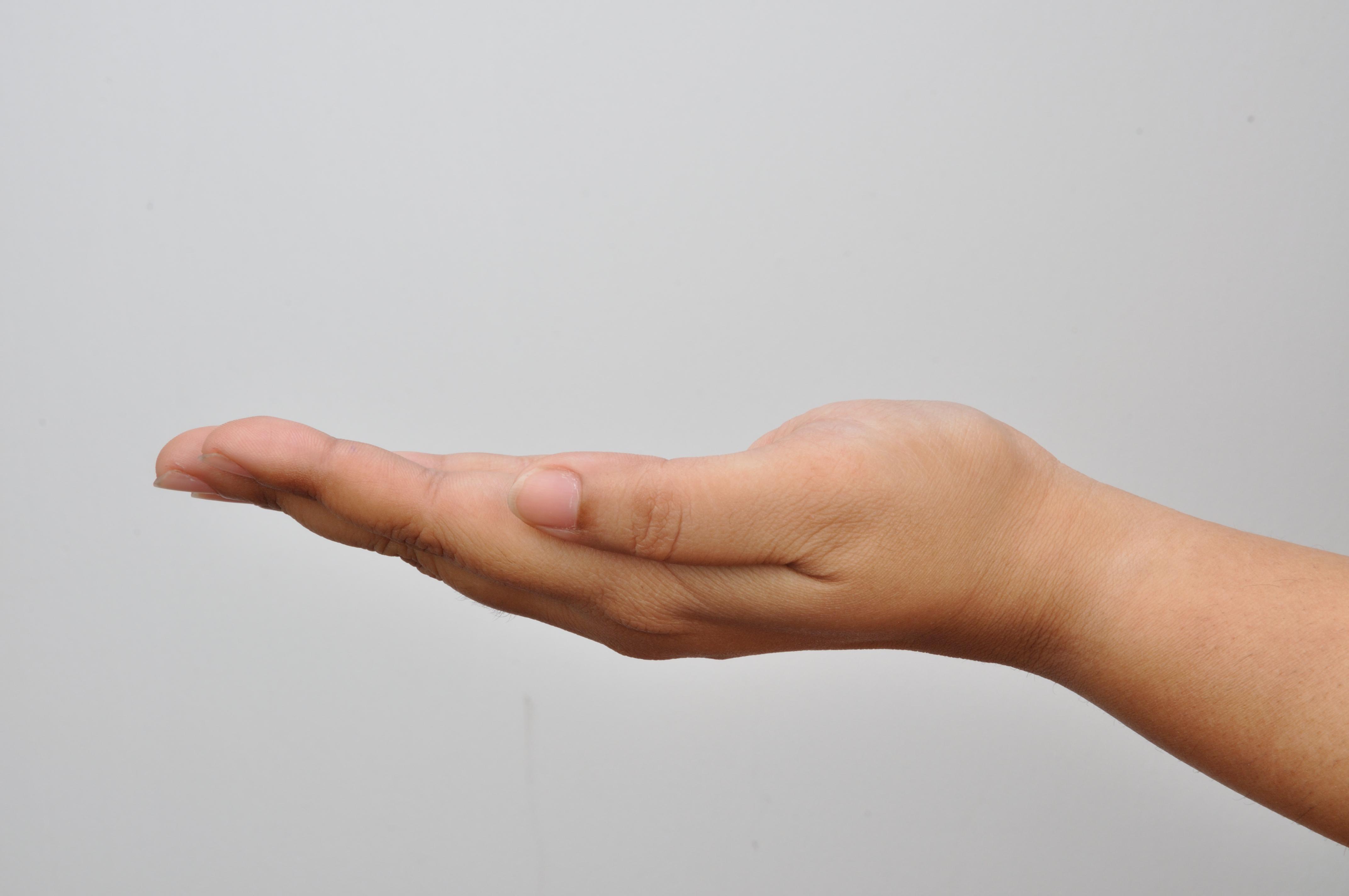 Left_Hand_-_Kolkata_2011-04-20_2351