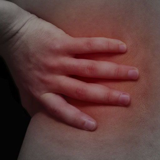 Acute Lower Back Pain - RCEMLearning